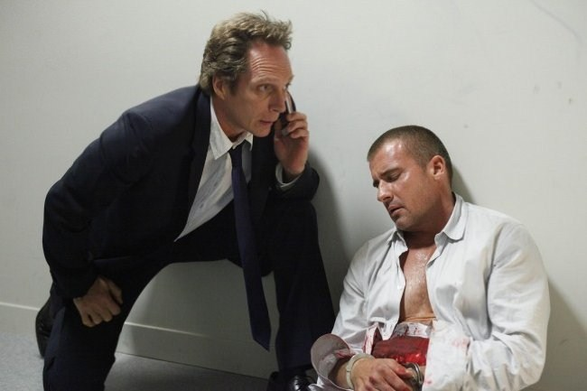 Dominic Purcell imagen 1
